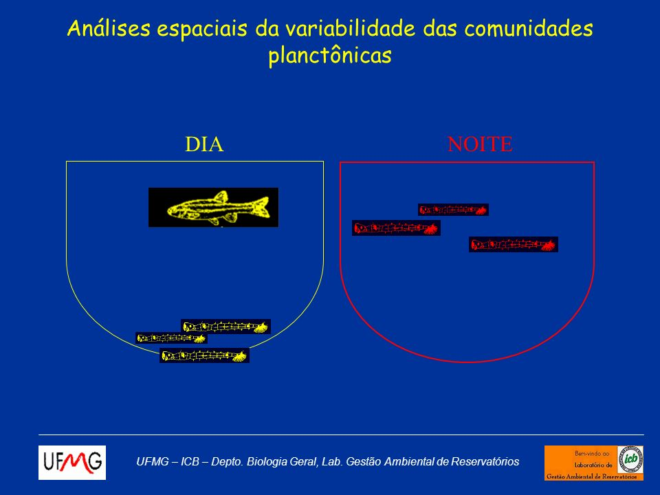 Análises espaciais da variabilidade das comunidades planctônicas