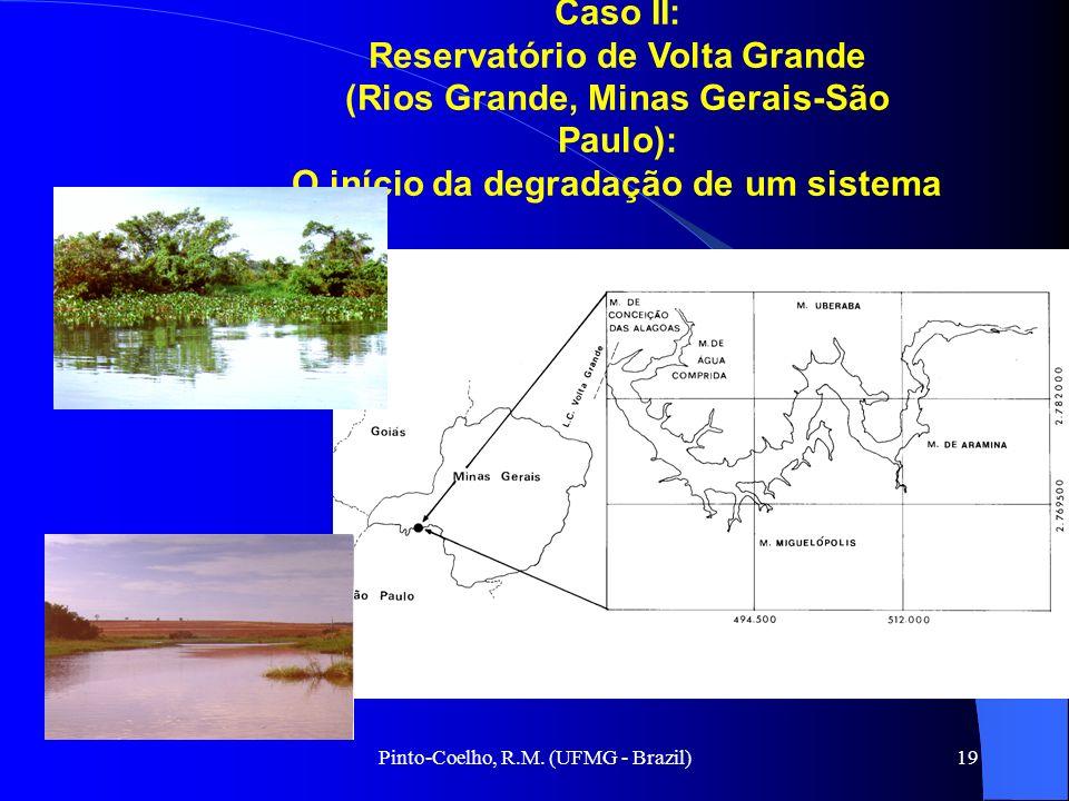 Reservatório de Volta Grande (Rios Grande, Minas Gerais-São Paulo):