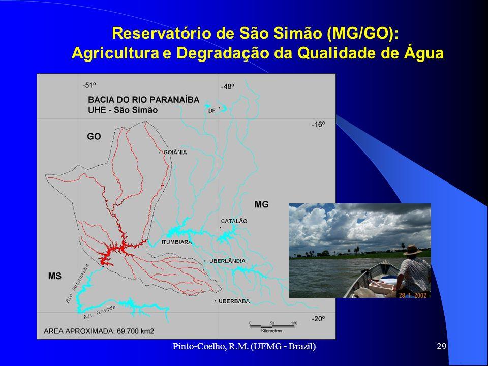Reservatório de São Simão (MG/GO):