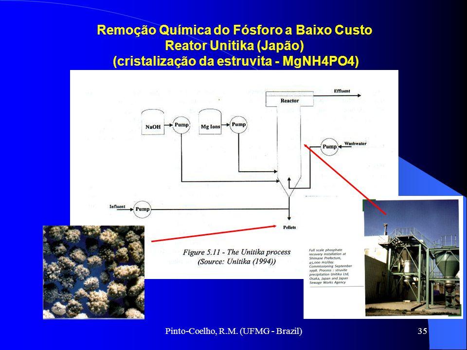 Remoção Química do Fósforo a Baixo Custo Reator Unitika (Japão)