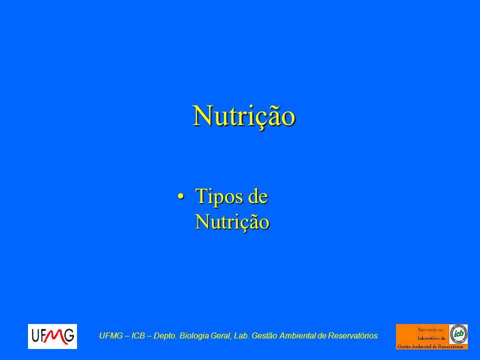 Nutrição Tipos de Nutrição
