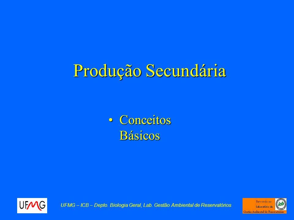 Produção Secundária Conceitos Básicos