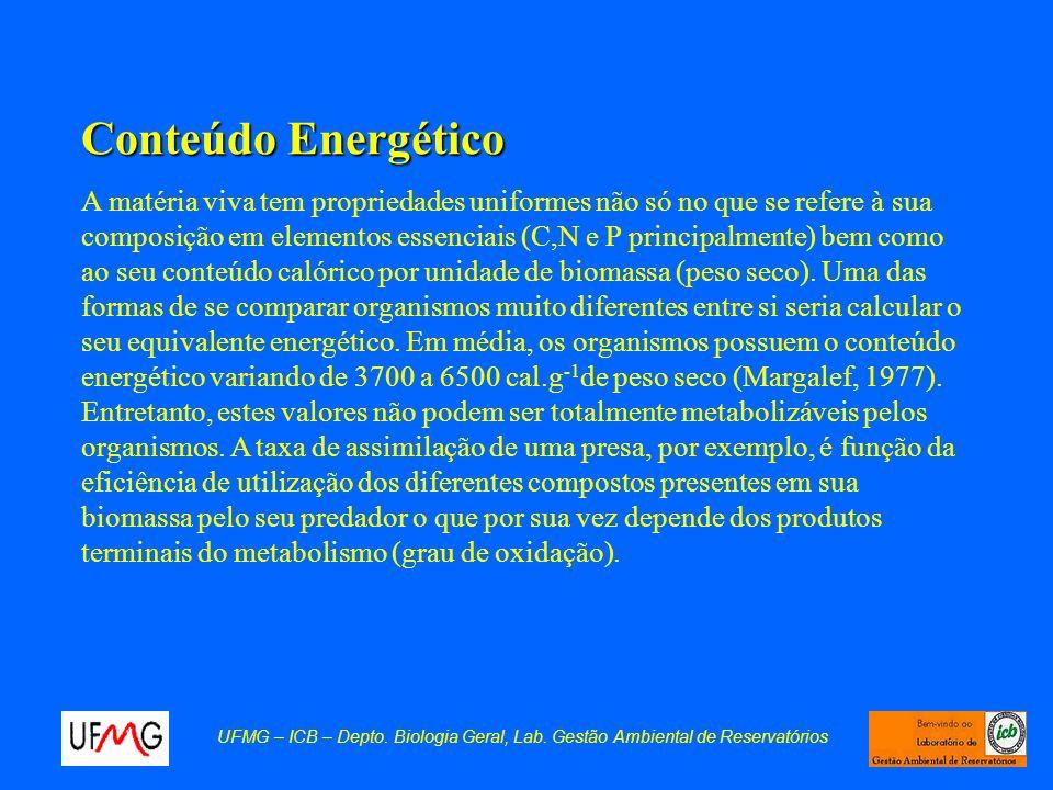 Conteúdo Energético