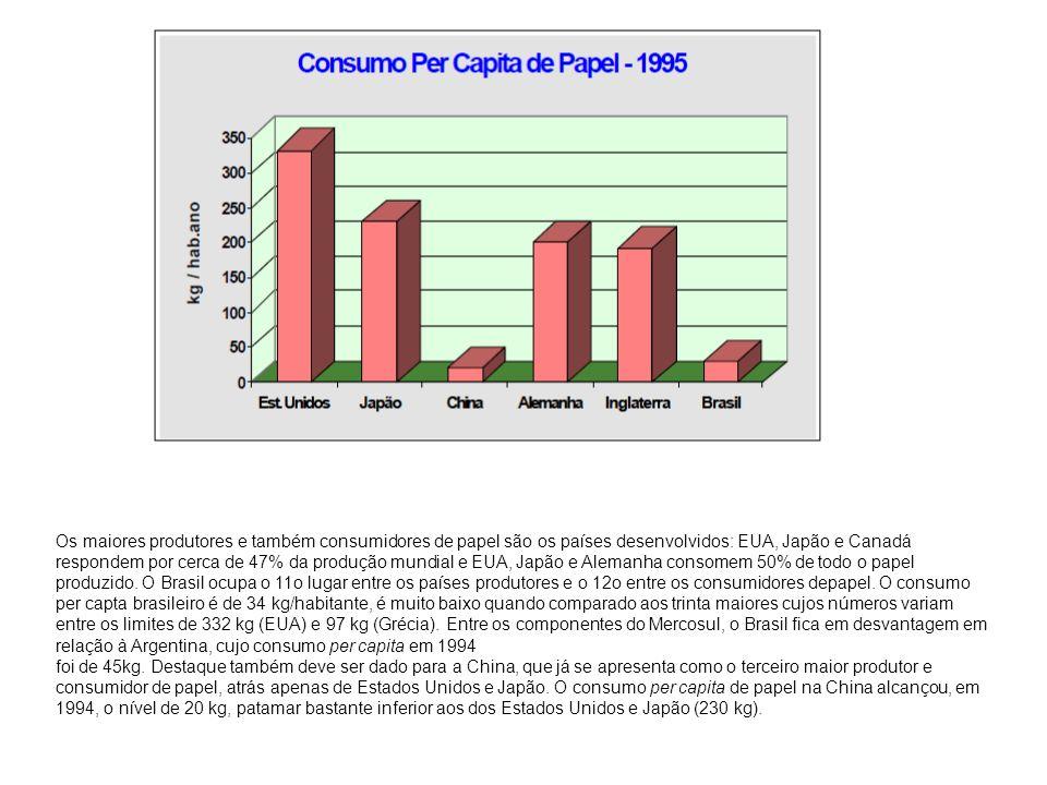 Os maiores produtores e também consumidores de papel são os países desenvolvidos: EUA, Japão e Canadá respondem por cerca de 47% da produção mundial e EUA, Japão e Alemanha consomem 50% de todo o papel produzido. O Brasil ocupa o 11o lugar entre os países produtores e o 12o entre os consumidores depapel. O consumo per capta brasileiro é de 34 kg/habitante, é muito baixo quando comparado aos trinta maiores cujos números variam entre os limites de 332 kg (EUA) e 97 kg (Grécia). Entre os componentes do Mercosul, o Brasil fica em desvantagem em relação à Argentina, cujo consumo per capita em 1994