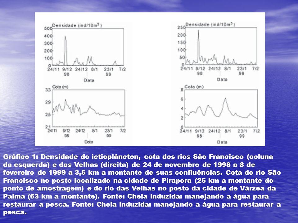 Gráfico 1: Densidade do ictioplâncton, cota dos rios São Francisco (coluna da esquerda) e das Velhas (direita) de 24 de novembro de 1998 a 8 de fevereiro de 1999 a 3,5 km a montante de suas confluências.