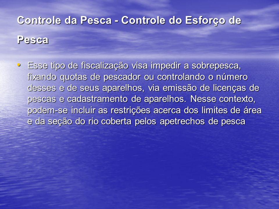 Controle da Pesca - Controle do Esforço de Pesca