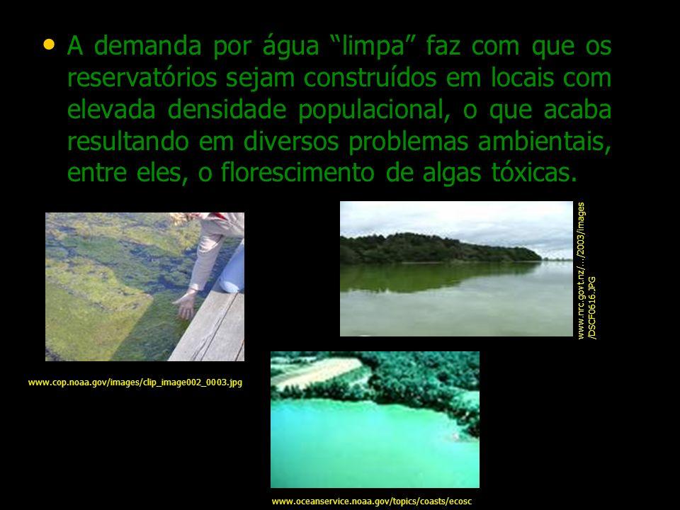 A demanda por água limpa faz com que os reservatórios sejam construídos em locais com elevada densidade populacional, o que acaba resultando em diversos problemas ambientais, entre eles, o florescimento de algas tóxicas.