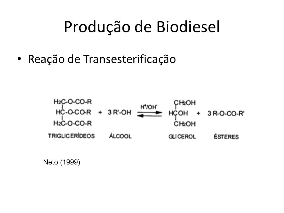 Produção de Biodiesel Reação de Transesterificação Neto (1999)