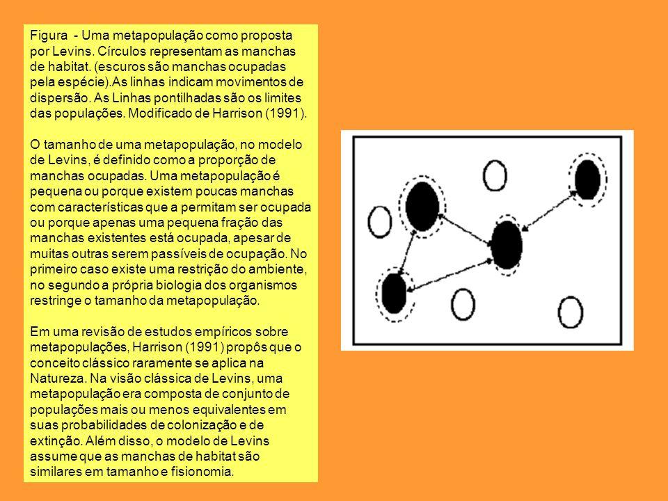Figura - Uma metapopulação como proposta por Levins
