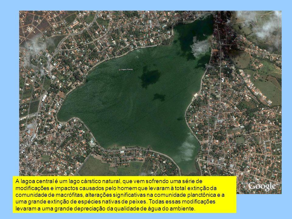 A lagoa central é um lago cárstico natural, que vem sofrendo uma série de modificações e impactos causados pelo homem que levaram à total extinção da comunidade de macrófitas, alterações significativas na comunidade planctônica e a uma grande extinção de espécies nativas de peixes.