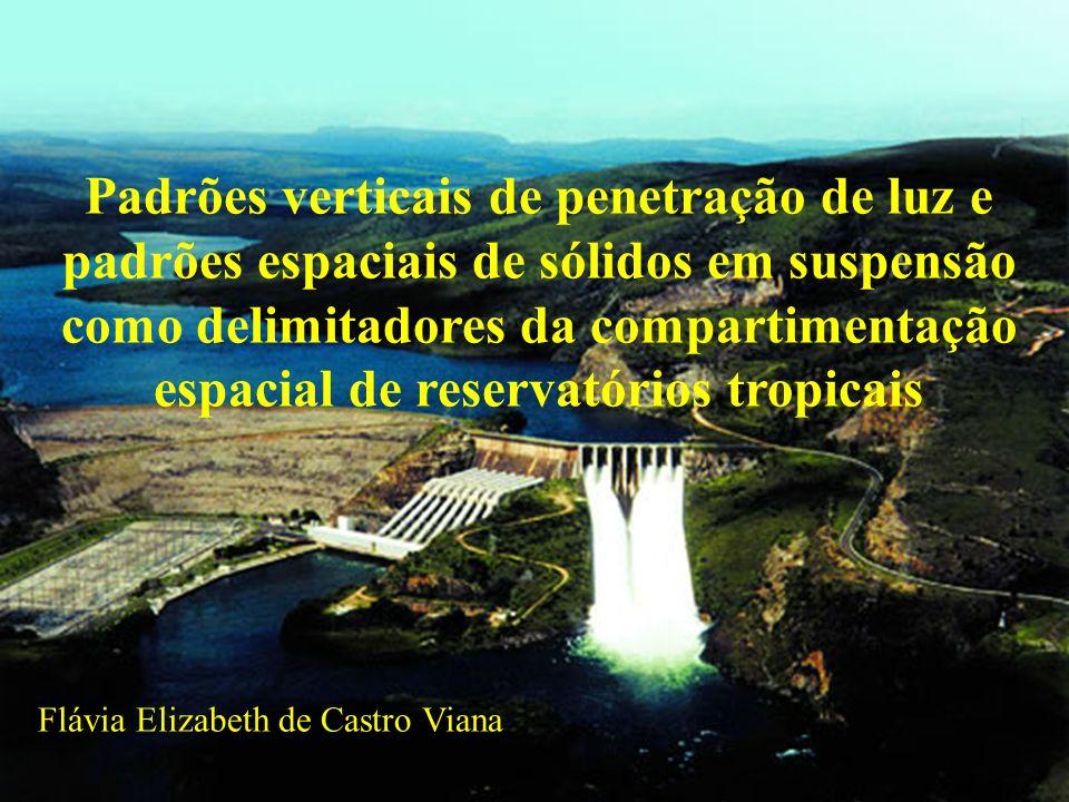 Padrões verticais de penetração de luz e padrões espaciais de sólidos em suspensão como delimitadores da compartimentação espacial de reservatórios tropicais