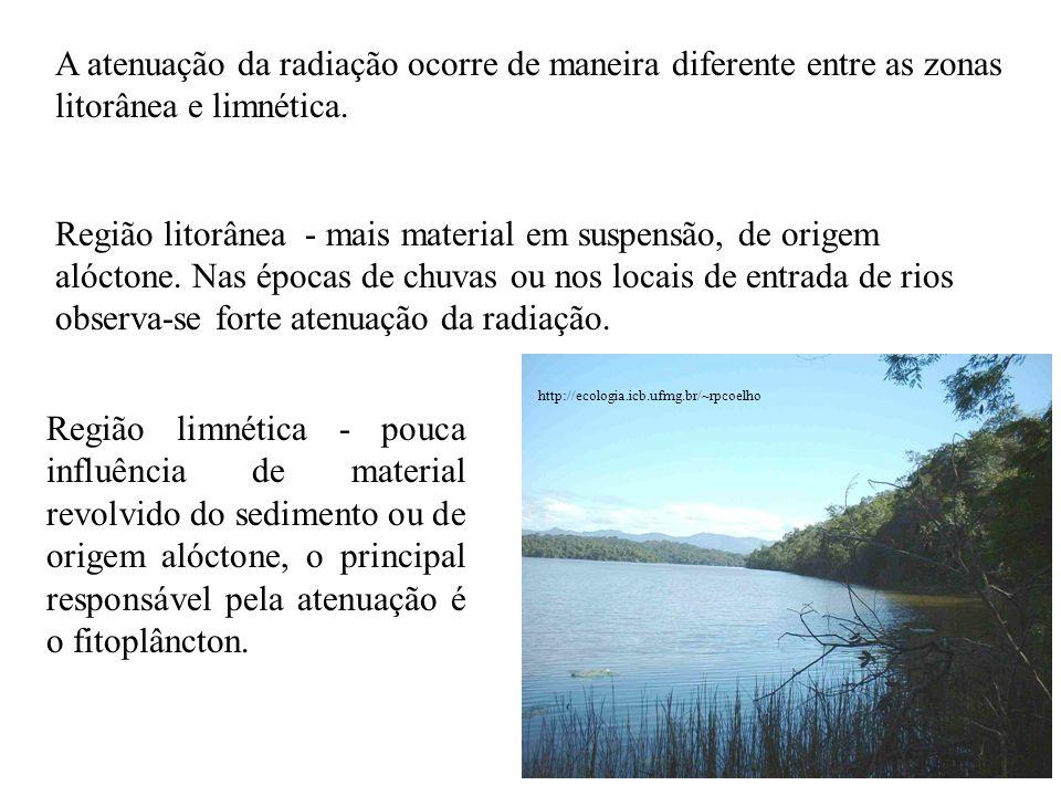 A atenuação da radiação ocorre de maneira diferente entre as zonas litorânea e limnética.