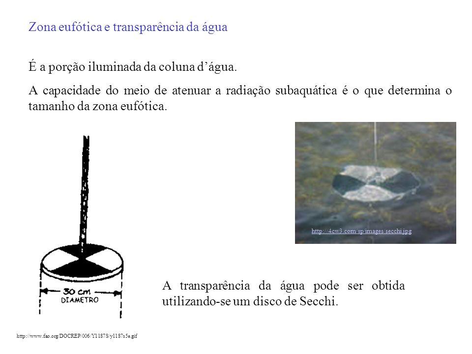 Zona eufótica e transparência da água