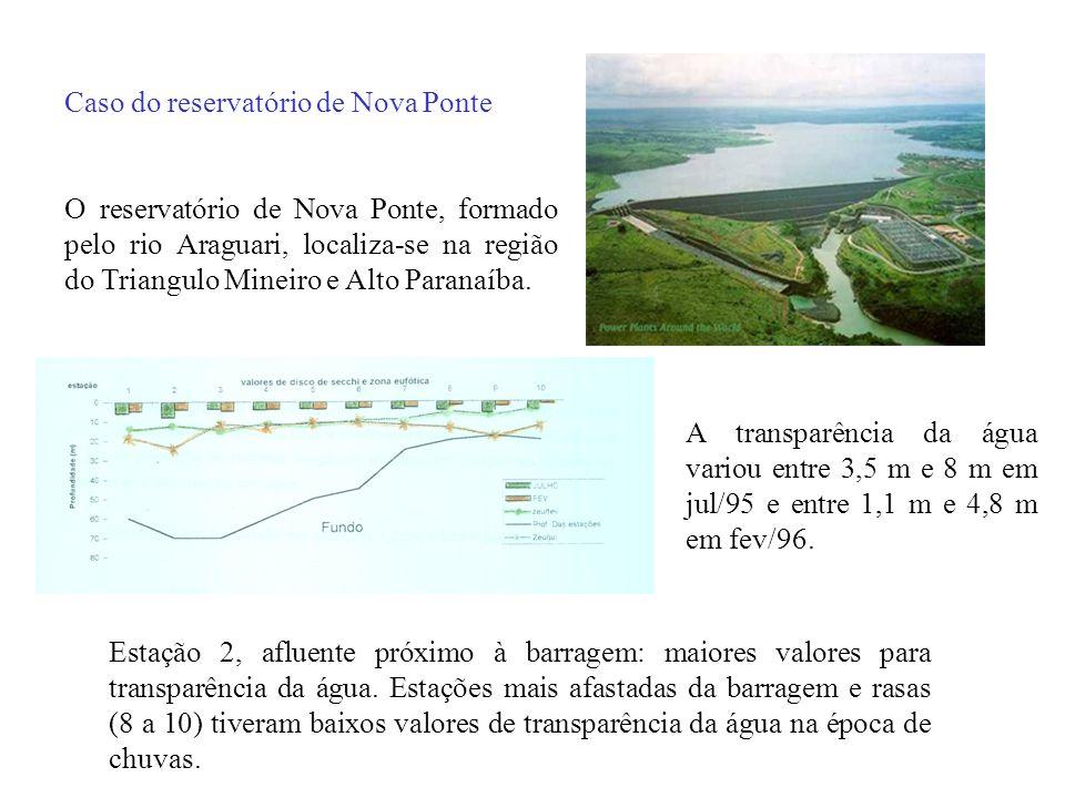 Caso do reservatório de Nova Ponte