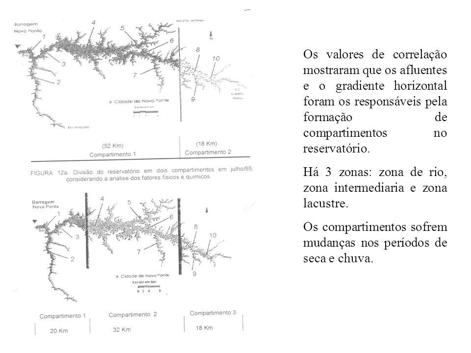 Os valores de correlação mostraram que os afluentes e o gradiente horizontal foram os responsáveis pela formação de compartimentos no reservatório.