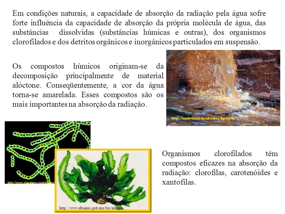 Em condições naturais, a capacidade de absorção da radiação pela água sofre forte influência da capacidade de absorção da própria molécula de água, das substâncias dissolvidas (substâncias húmicas e outras), dos organismos clorofilados e dos detritos orgânicos e inorgânicos particulados em suspensão.