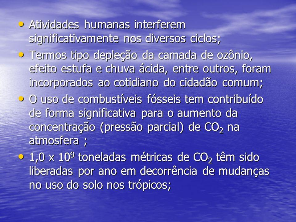 Atividades humanas interferem significativamente nos diversos ciclos;