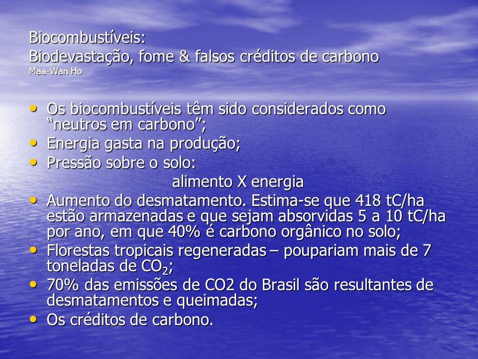 Biocombustíveis: Biodevastação, fome & falsos créditos de carbono Mae-Wan Ho
