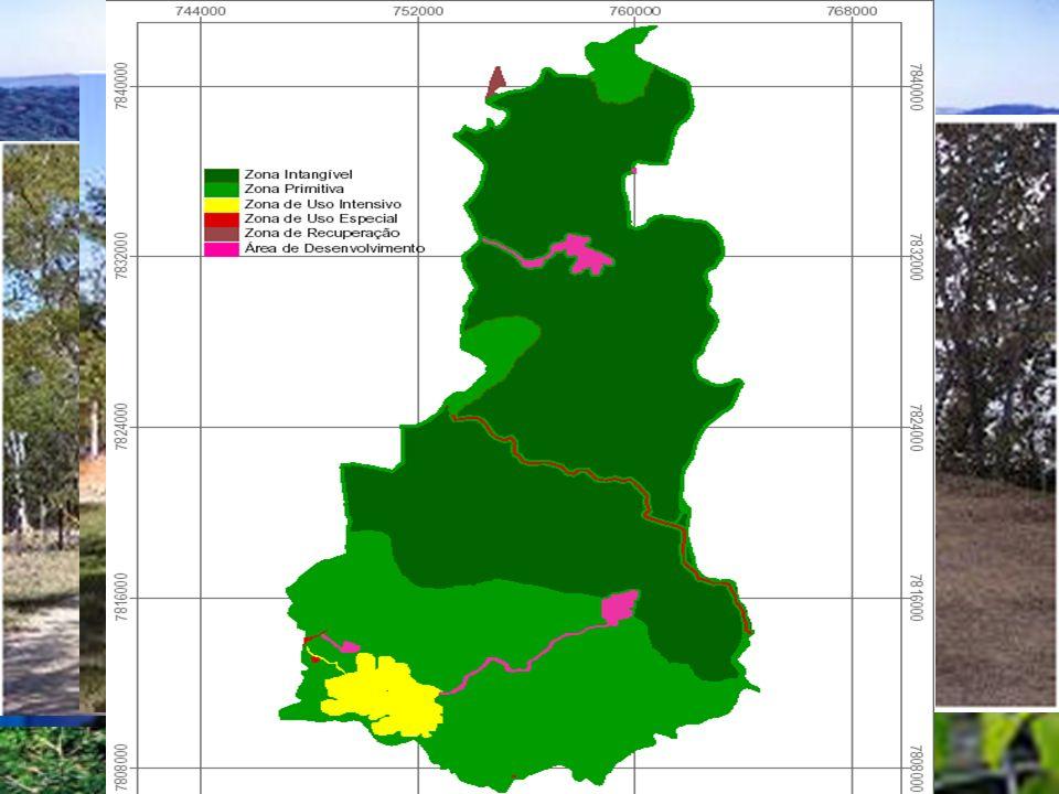 Outros impactos Visitação Poluição industrial Viveiro de mudas