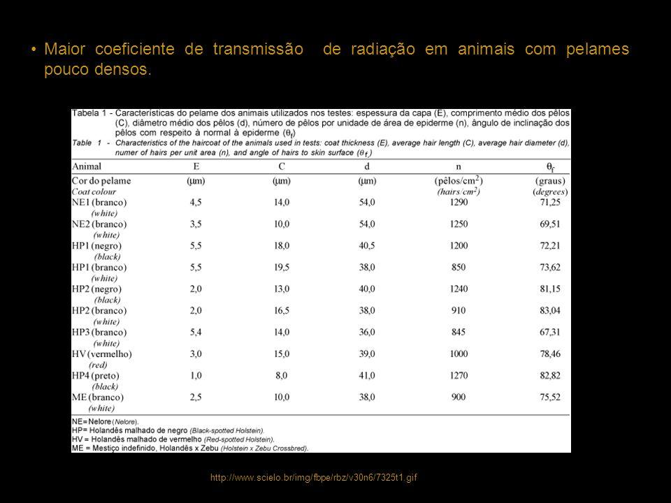 Maior coeficiente de transmissão de radiação em animais com pelames pouco densos.