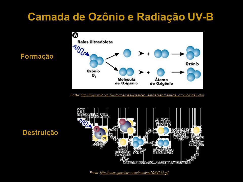 Camada de Ozônio e Radiação UV-B