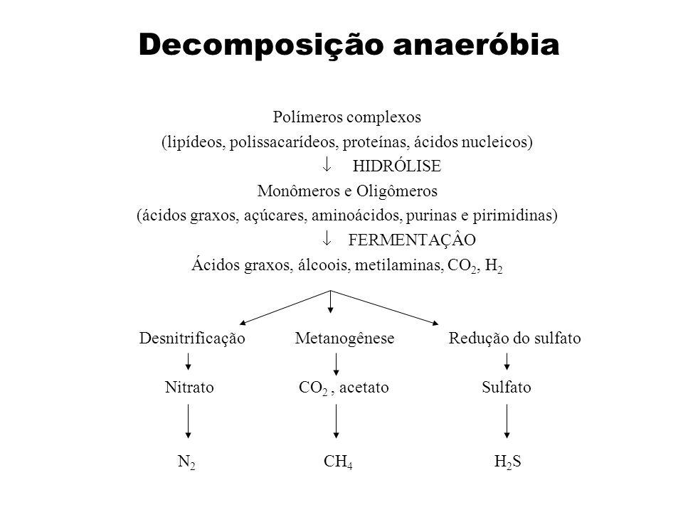 Decomposição anaeróbia