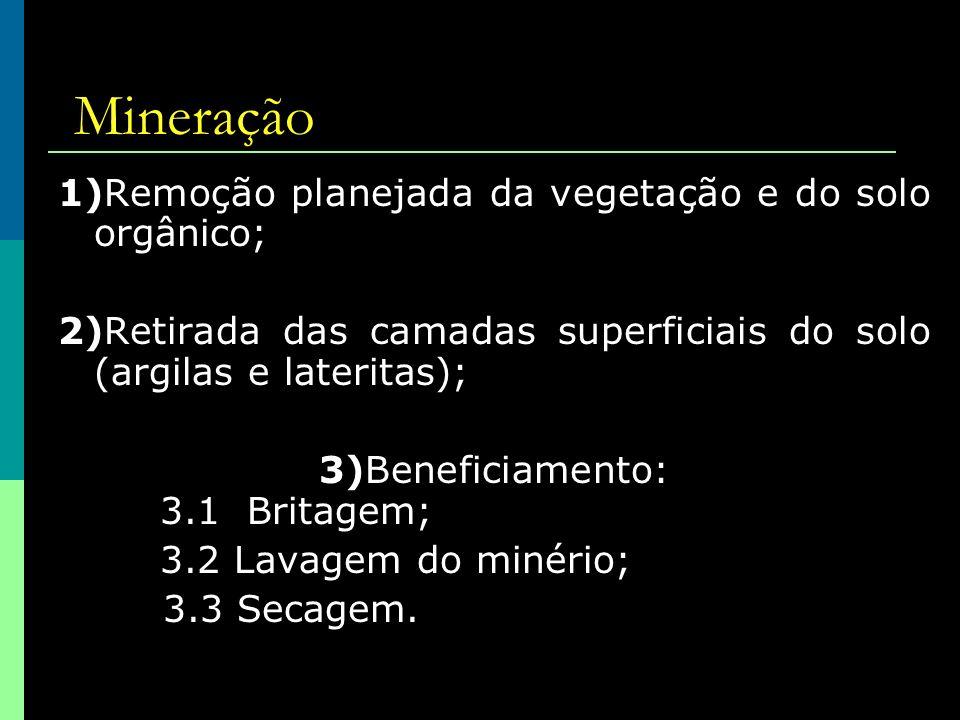 Mineração 1)Remoção planejada da vegetação e do solo orgânico;
