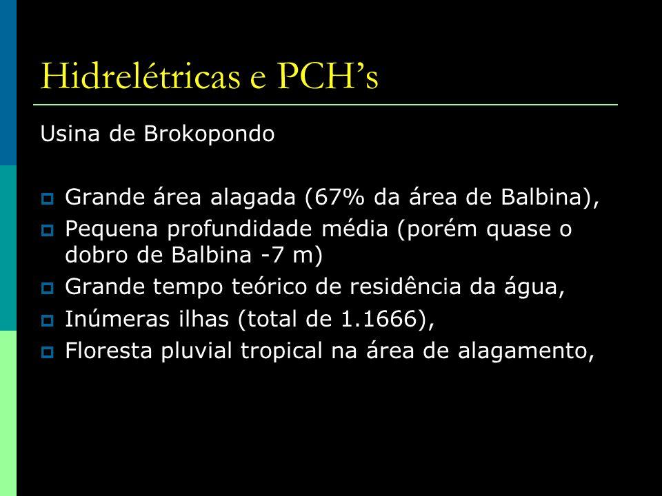 Hidrelétricas e PCH's Usina de Brokopondo