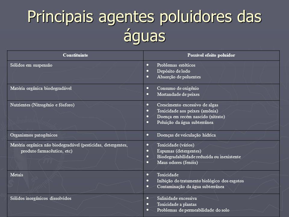 Principais agentes poluidores das águas