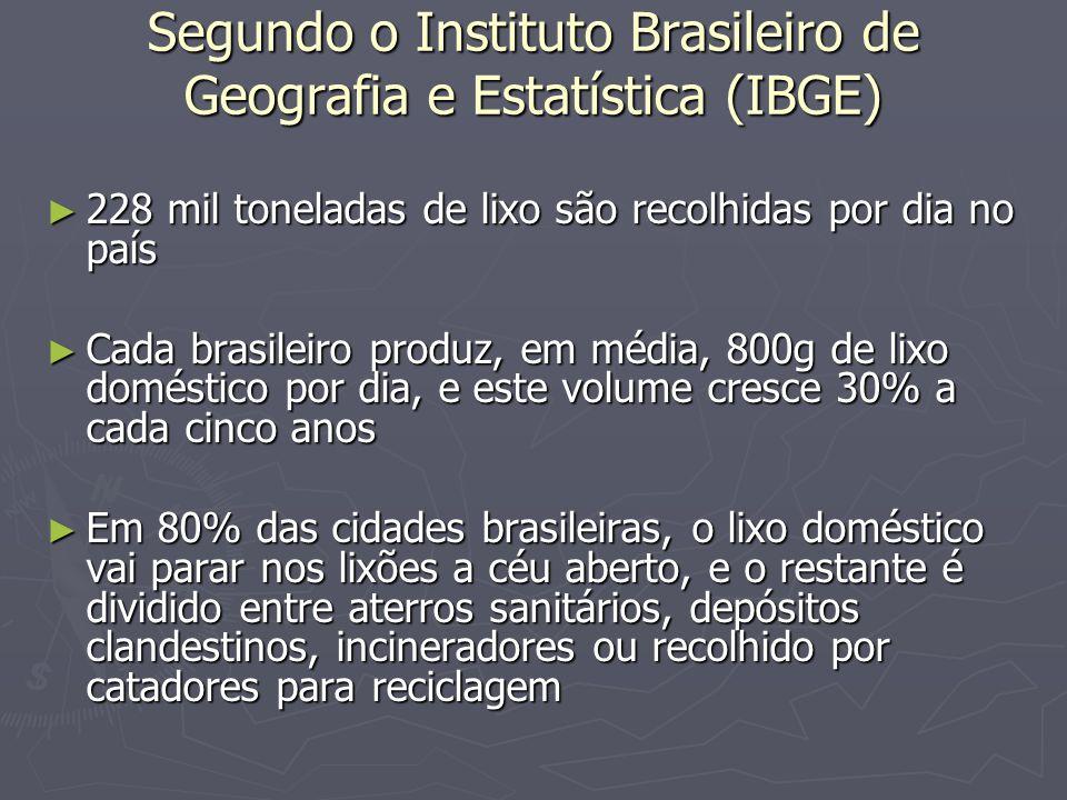 Segundo o Instituto Brasileiro de Geografia e Estatística (IBGE)