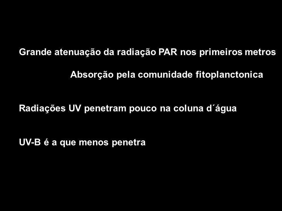 Grande atenuação da radiação PAR nos primeiros metros