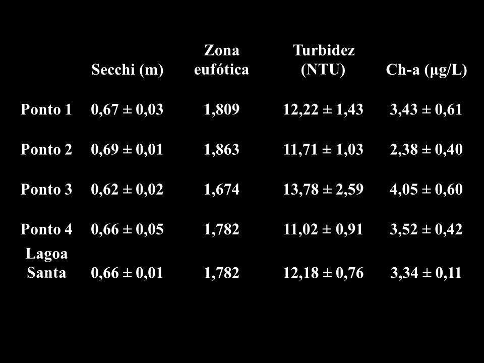 Secchi (m) Zona eufótica. Turbidez (NTU) Ch-a (μg/L) Ponto 1. 0,67 ± 0,03. 1,809. 12,22 ± 1,43.