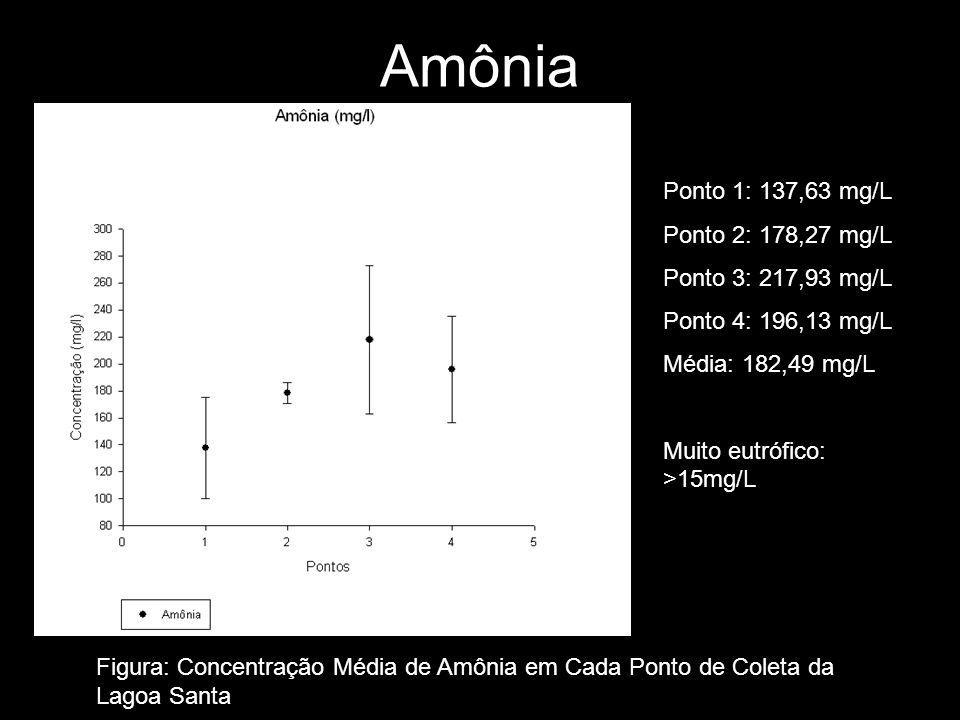 Amônia Ponto 1: 137,63 mg/L Ponto 2: 178,27 mg/L Ponto 3: 217,93 mg/L