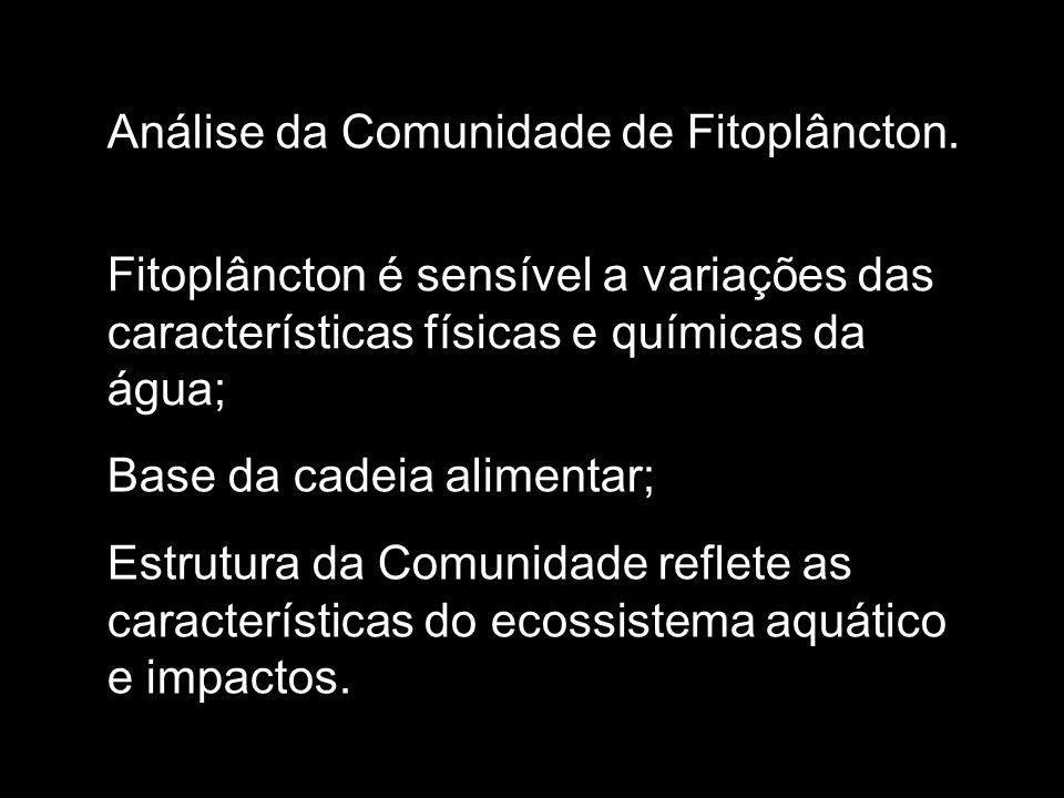 Análise da Comunidade de Fitoplâncton.