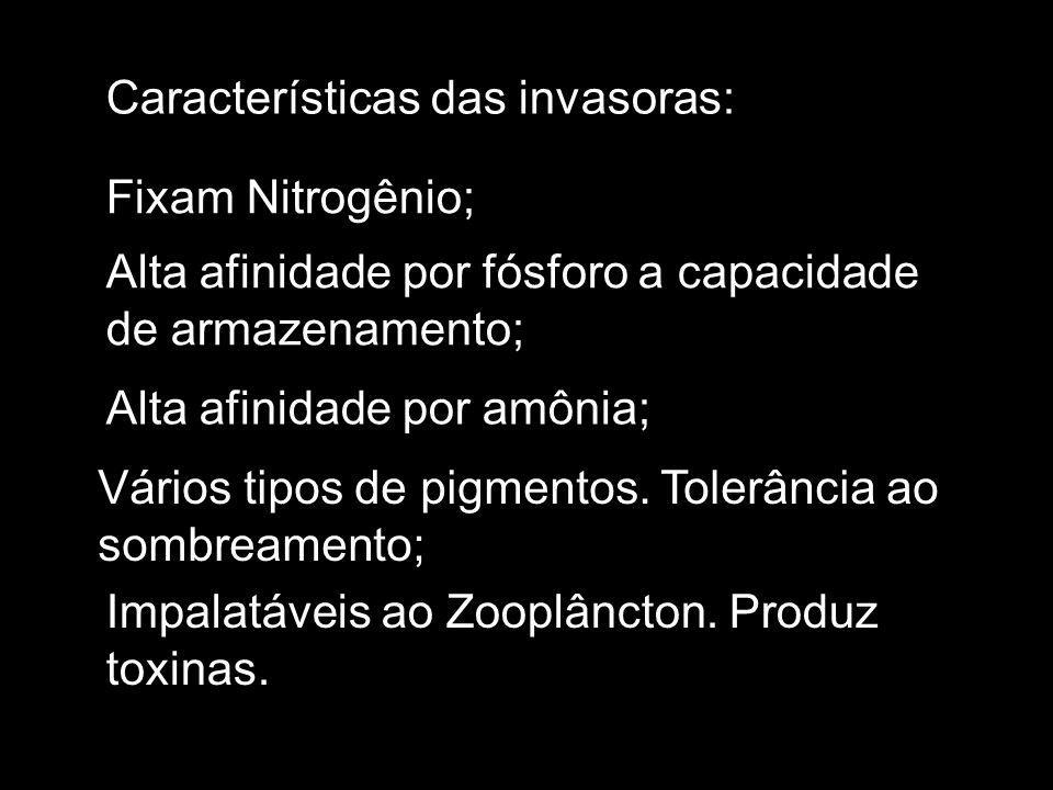 Características das invasoras: