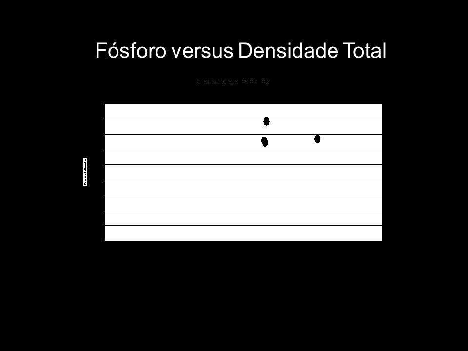 Fósforo versus Densidade Total