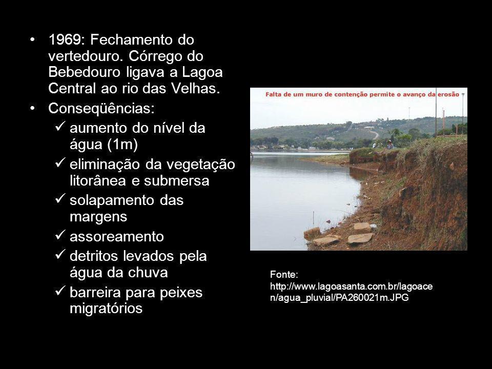 aumento do nível da água (1m)