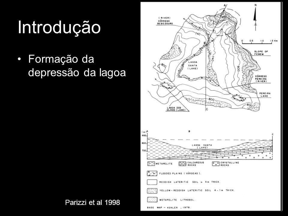 Introdução Formação da depressão da lagoa Parizzi et al 1998