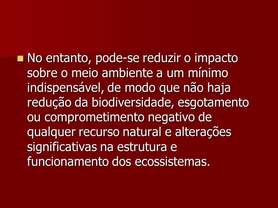 No entanto, pode-se reduzir o impacto sobre o meio ambiente a um mínimo indispensável, de modo que não haja redução da biodiversidade, esgotamento ou comprometimento negativo de qualquer recurso natural e alterações significativas na estrutura e funcionamento dos ecossistemas.