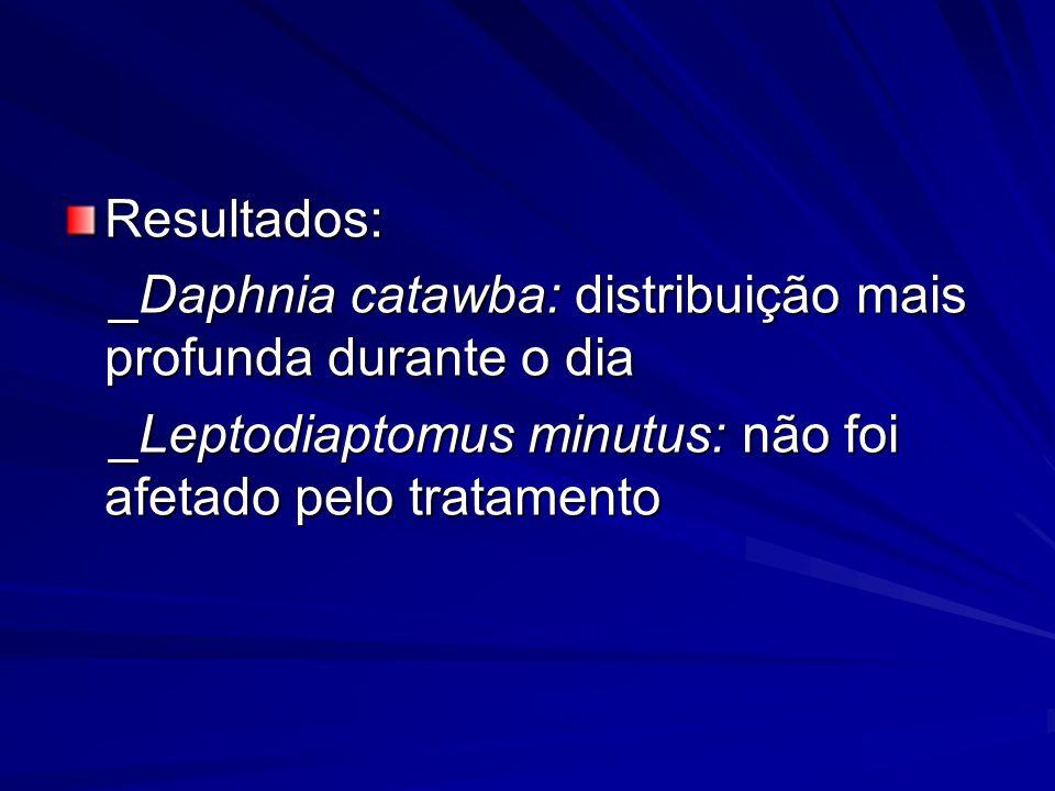 _Daphnia catawba: distribuição mais profunda durante o dia