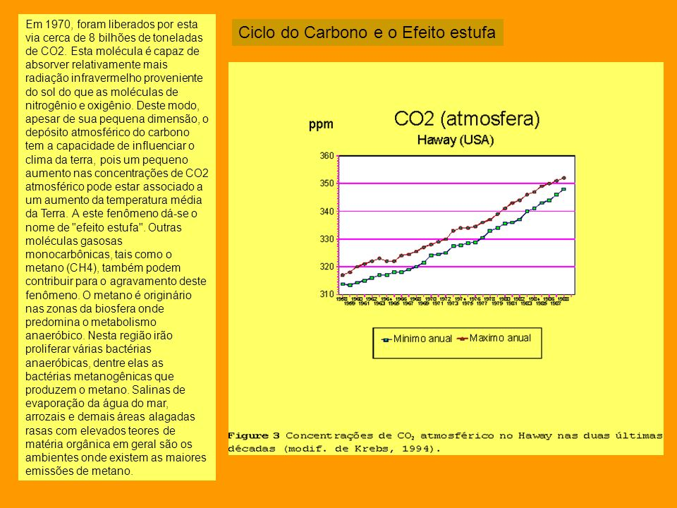 Ciclo do Carbono e o Efeito estufa