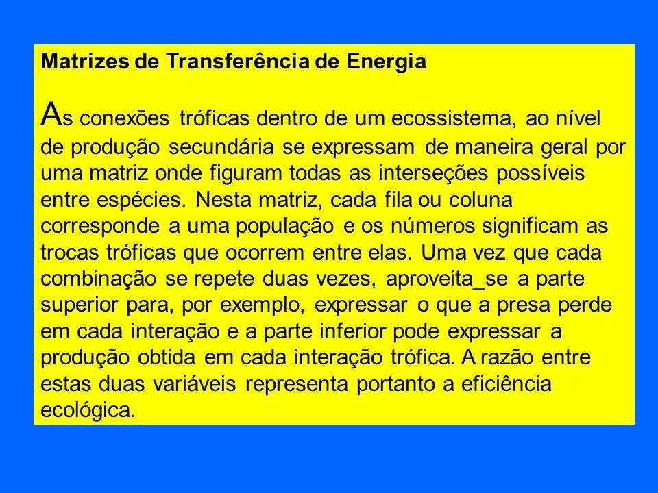 Matrizes de Transferência de Energia