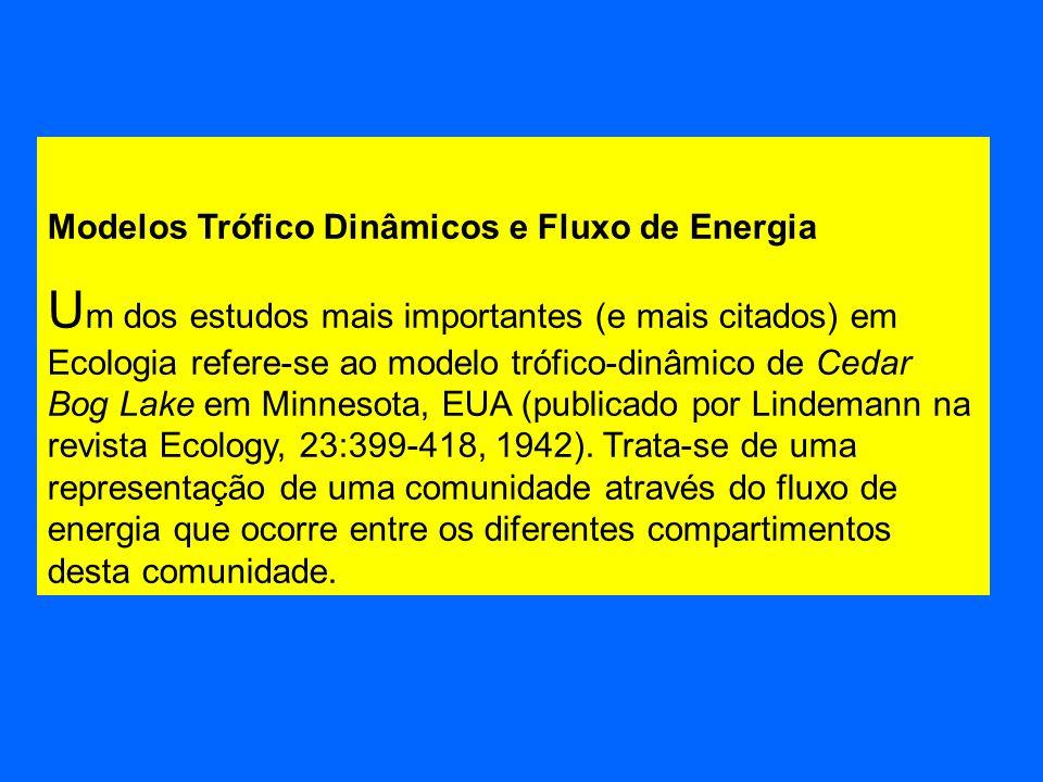 Modelos Trófico Dinâmicos e Fluxo de Energia