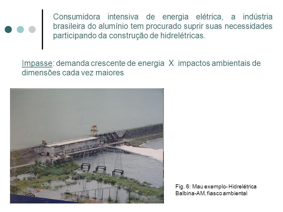 Consumidora intensiva de energia elétrica, a indústria brasileira do alumínio tem procurado suprir suas necessidades participando da construção de hidrelétricas.