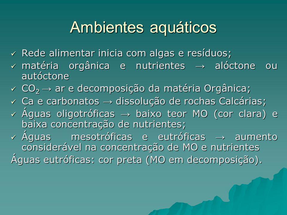 Ambientes aquáticos Rede alimentar inicia com algas e resíduos;