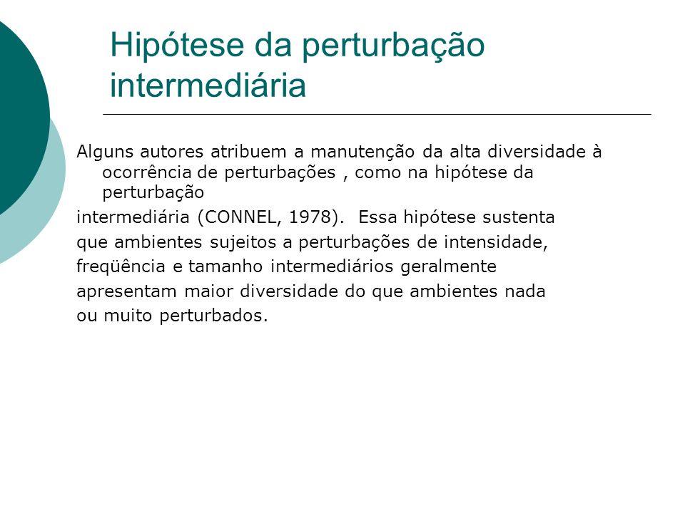 Hipótese da perturbação intermediária