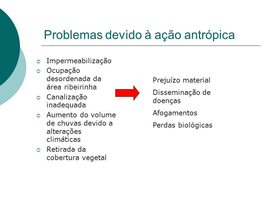 Problemas devido à ação antrópica
