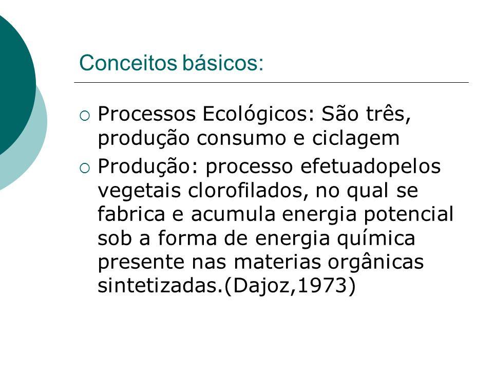 Conceitos básicos: Processos Ecológicos: São três, produção consumo e ciclagem.