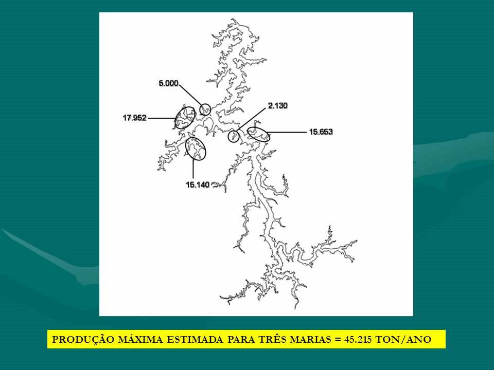 PRODUÇÃO MÁXIMA ESTIMADA PARA TRÊS MARIAS = 45.215 TON/ANO