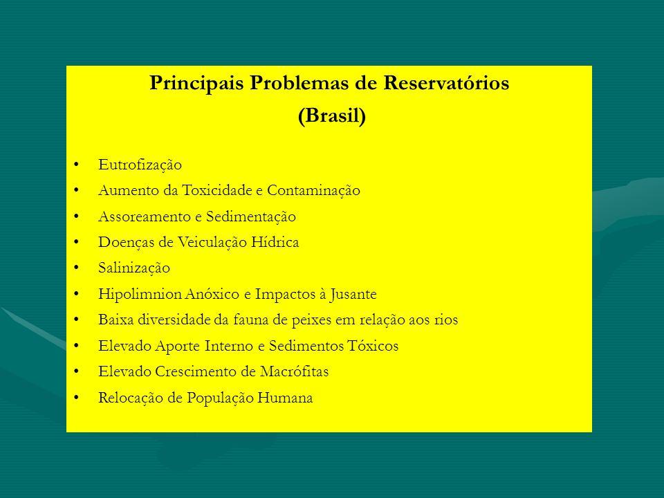 Principais Problemas de Reservatórios
